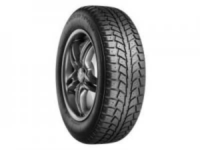 Image of a Tiger Paw Ice & Snow II BW tire, which can be found at Active Green + Ross in Toronto, ON